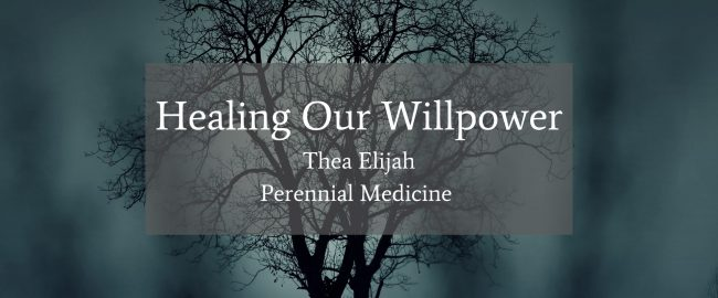 Healing Our Willpower Title